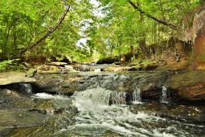 Alabaster Development and Recreation Property - Shelby County AL