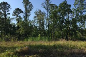 Bayou Coden Homesite or Development Tract in Mobile, AL (4 of 8)
