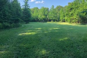 Mature Hardwood & Great Hunting Tract - Lafayette County MS