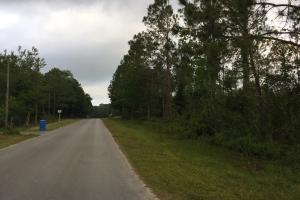 Bayou La Batre Homesite/Development and Timber Tract - Mobile County AL