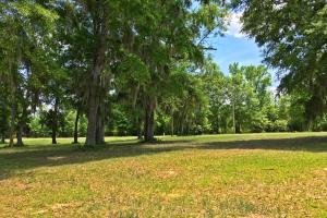 Sand Island River Lot #7 in Wilcox, AL (4 of 9)