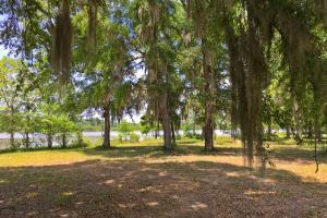 Sand Island River Lot #7 in Wilcox, AL (5 of 9)
