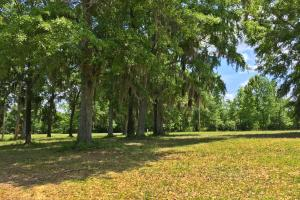 Sand Island River Lot #7 in Wilcox, AL (6 of 9)