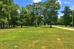 Sand Island River Lot #7 in Wilcox, AL (9 of 9)
