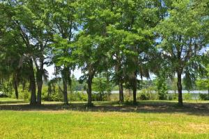 Sand Island River Lot #7 in Wilcox, AL (7 of 9)