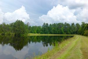 View of dam of lake. #GeorgiaLandForSale (14 of 62)