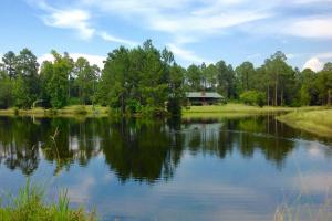 Beautiful home and barn setting overlooking lake, pond, open fields and timber. #GeorgiaLandForSale (1 of 62)