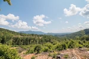 Tryon Large Estate Tract with Pond, Creek, and Privacy in Polk, NC (38 of 38)