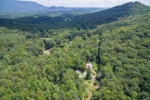 Tryon Large Estate Tract with Pond, Creek, and Privacy in Polk, NC (21 of 38)