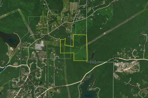 Clayton Cove Road Recreational, Hunting & Timber Tract - Jefferson County AL
