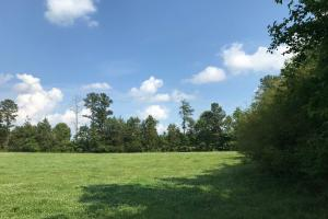 Mini Farm and Homesite, 10.23 Acres - Greenville County SC