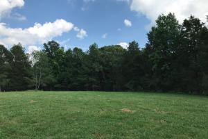 Mini Farm and Homesite, 10.09 Acres - Greenville County SC