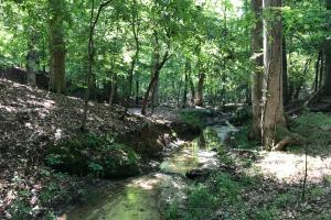 Mini Farm and Homesite, 8.08 Acres - Greenville County SC