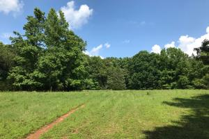 Mini Farm and Homesite, 7.74 Acres - Greenville County SC