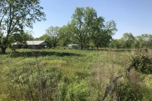 Lamar Co. Sheriff Auction Main Tract - 230 acres in Lamar, MS (19 of 33)