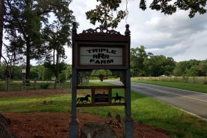920 Calvin Phillips Road/ Historic Farm - Chatham County NC