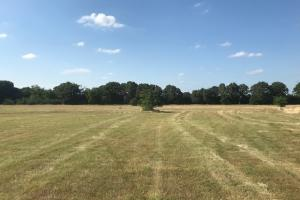 10 acres Near Mabank, Pasture, Great Building Site - Kaufman County TX