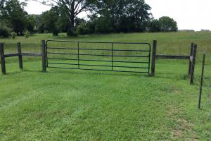 10 acre mini farm with a beautiful house site - Hinds County MS