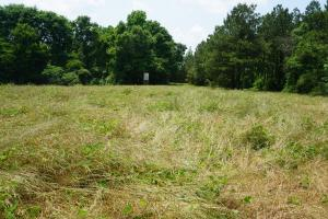 Akron Homesite, Hunting, and Timber Tract - Hale County AL