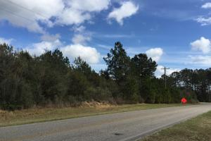 Baldwin County Rd 68 Homesite/Development Tract - Baldwin County AL
