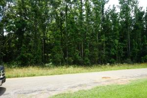 Akron Hunting and Future Development - Hale County AL