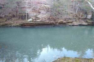 280 Acres Adjoining Cherokee WMA and the West Fork of Point Remove Creek - Conway County AR