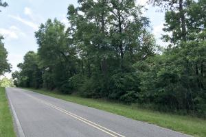 The Canaan Road Tract - Baldwin County AL