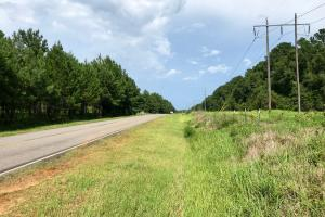 The Laurendine & Industrial Road Development Tract - Mobile County AL
