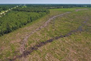 Jacksonville Development Tract in Onslow, NC (2 of 6)