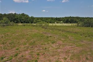 Jacksonville Development Tract in Onslow, NC (4 of 6)