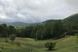 Yadkin Valley Tract in Caldwell, NC (83 of 96)