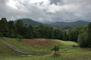 Yadkin Valley Tract in Caldwell, NC (69 of 96)
