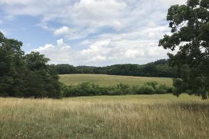 Hubbs Farm Lots 1&2 - Blount County TN