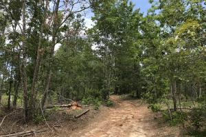 Recreational Land and Homesite in Edgefield, SC (5 of 8)