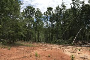 Recreational Land and Homesite in Edgefield, SC (3 of 8)