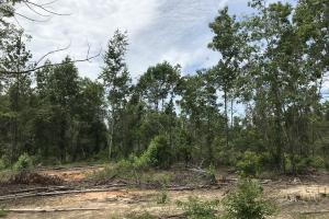 Recreational Land and Homesite in Edgefield, SC (4 of 8)