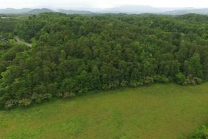 Sevierville Land Development Tract in Sevier, TN (11 of 18)