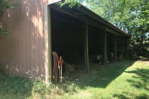 Roberts' Hidden Ranch in Seward, NE (24 of 49)