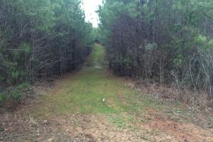 Home Site and Recreational Tract in Kosciusko School District - Attala County MS