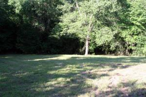 300 Acre Hunting Tract in Schley, GA (15 of 34)