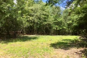 300 Acre Hunting Tract in Schley, GA (30 of 34)