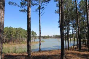 Beautiful Lake Property With Lodge - Attala County MS