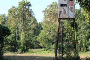 <p>Stand Overlooking Food Plot</p>