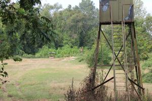 <p>Stand on Food Plot with Two Feeders</p>
