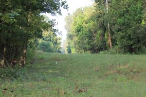 <p>Pipeline ROW makes for excellent food Plots and Shooting Lanes</p>