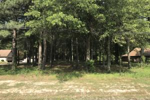 33+/- Acres Timberland, Residential or Development - Monroe County AR