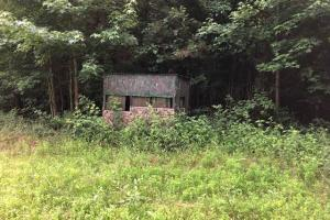 137 ac Hunting / Timber Tract near Big Black River in Montgomery, MS (38 of 41)