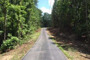 Bald Rock Mountain Tract with Lodge in Saint Clair, AL (4 of 22)