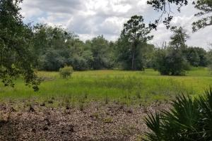 Magnolia Hidden Homesite Country Retreat - DeSoto County FL