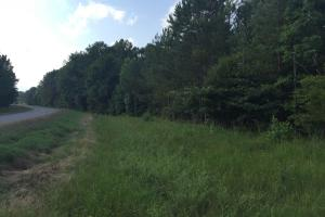Bradley Timber & Recreational Tract - Oktibbeha County MS